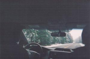 Car n Trees 001