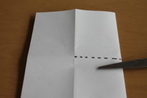 Use sissors to cut across the dotted line shown, through both layers of paper.