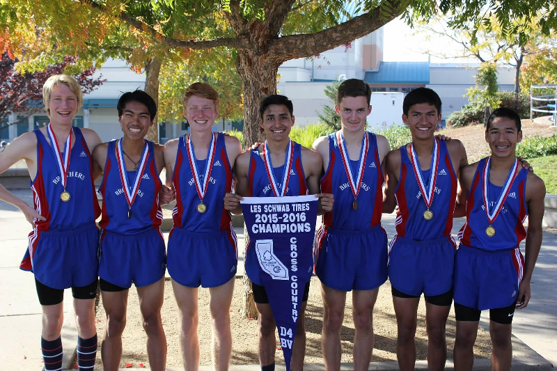 xc-sections