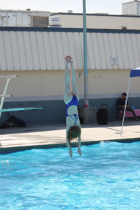 dive libby